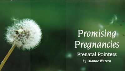 Prenatal Resource Guide