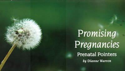 Prenatal Resource Guide